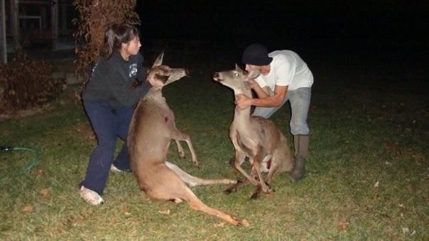 Мариса Гонсало позирует с мертвыми оленями