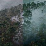 """Разбор визуальных эффектов (VFX) в сериале """"Ведьмак"""""""