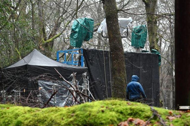 Палатки с осветительным оборудованием в лесу